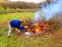 Scrub clearing with Lizard Ancient Sites Network