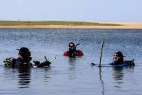 Kennack Divers helping ecological survey