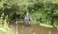 Himalayan Balsam clearing in the Willow Carr