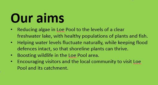 loe pool aims